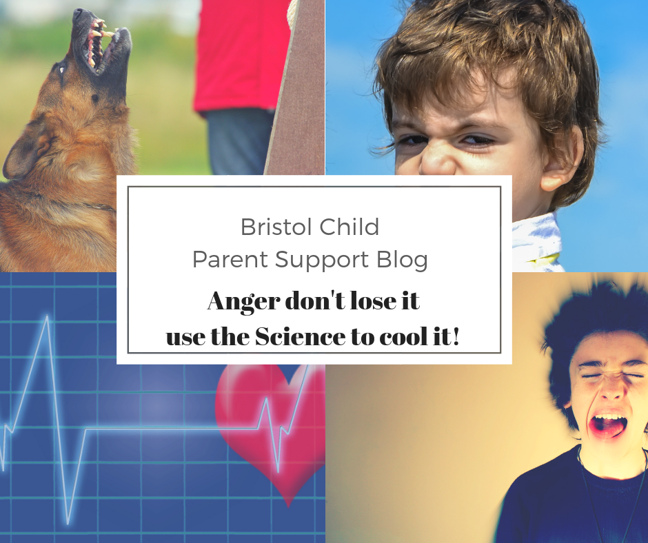 Anger, don't lose it, use the Science to cool it!