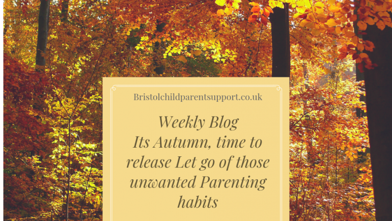 Autumn, Letting Go in Parenting and Life